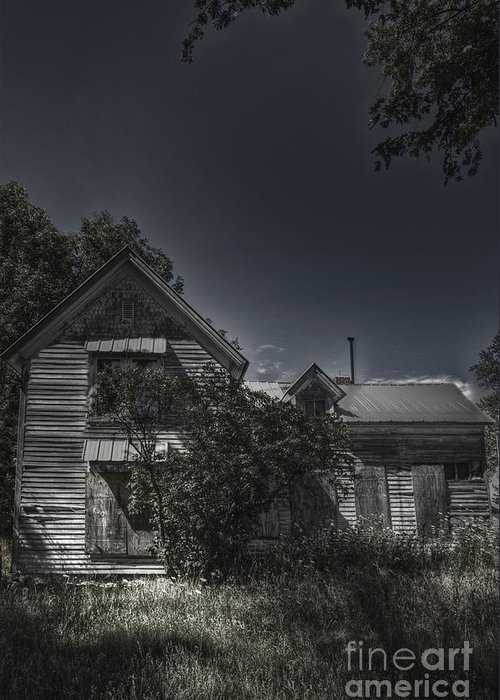 House; Home; Small; Farm House; Boarded; Boards; Wood; Falling Apart; Weeds; Grasses; Trees; Secluded; Abandoned; Desolate; Closed; Dark; Darkness; Ominous; Foreboding; Mystery; Mysterious; Deserted; Front; Facade; Covered; Shroud Greeting Card featuring the photograph Abandoned Farmhouse by Margie Hurwich