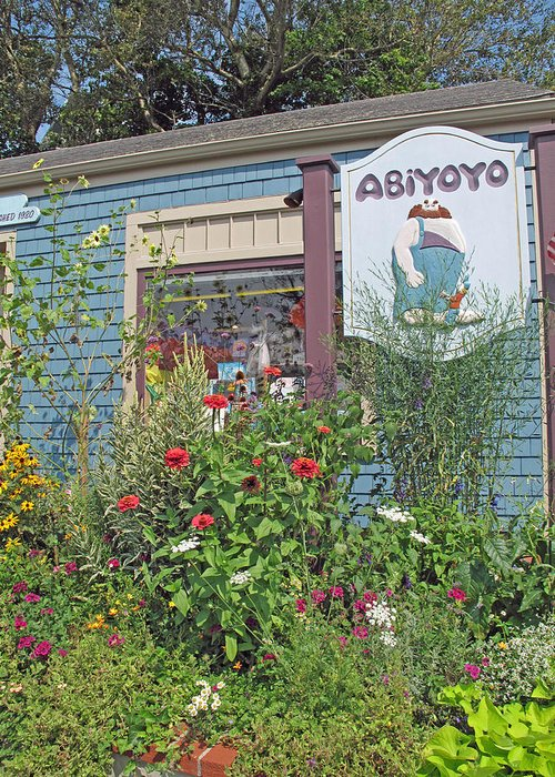 Toy Store Greeting Card featuring the photograph Abiyoyo by Barbara McDevitt