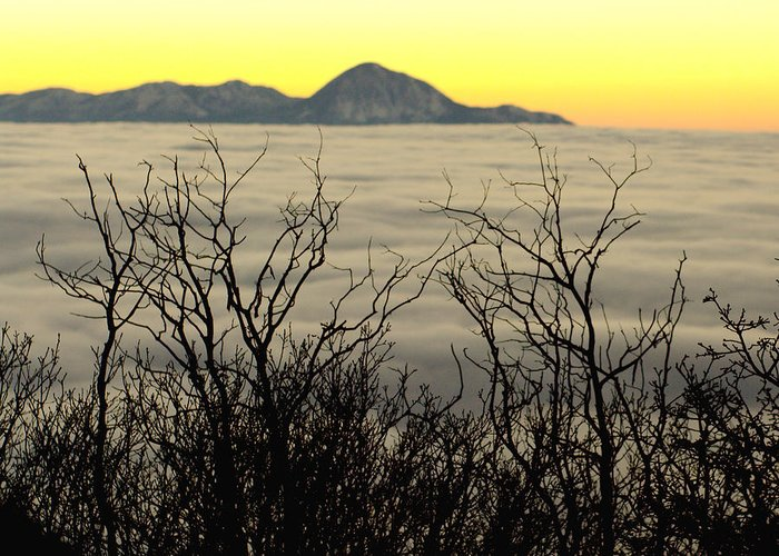 Clouds Greeting Card featuring the photograph Above The Clouds by Amber Smith