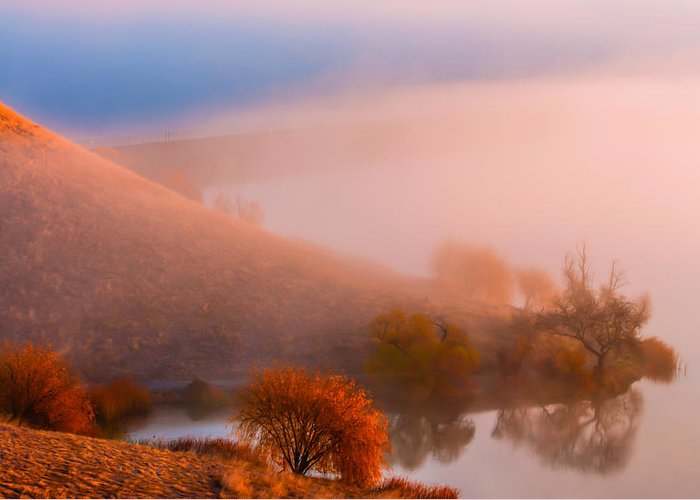 Landscape Greeting Card featuring the photograph Above The Fog by Marc Crumpler