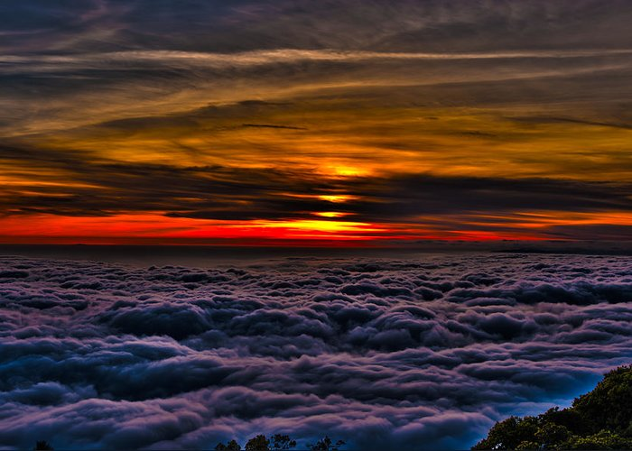 Mt Wilson Greeting Card featuring the photograph Above The Marine Layer by Richard J Cassato