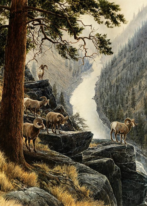 Salmon River Greeting Card featuring the painting Above The River by Steve Spencer