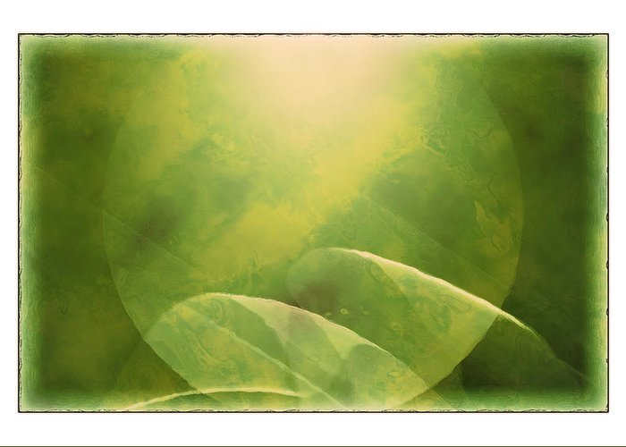 Abstract Greeting Card featuring the photograph Abstract Globe by Susan Leggett