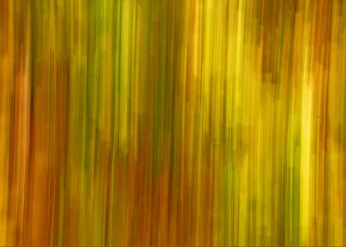 Abstract Greeting Card featuring the photograph Abstract Nature Background by Gry Thunes