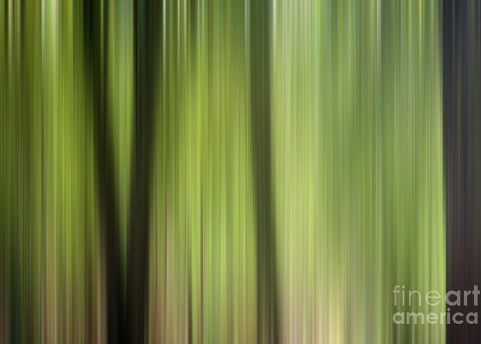 Ashdown Forest; Forest; Forests; Leaf; Leaves; Natalie Kinnear; Nature; Tree; Trees; Abstract; Abstracts; Vertical; Line; Lines; Linear; Blur; Green; Brown; Photo; Photos; Photograph; Photographs; Photography; Photographic; Print; Prints; Canvas; Canvases; Wall Art; Interior Design; Home Decor; Decor; Hallway; Lounge; Front Room; Living Room; Dining Room; Conservatory; Den; Snug; Office; Study; Bedroom Greeting Card featuring the photograph Abstract Trees In The Forest by Natalie Kinnear