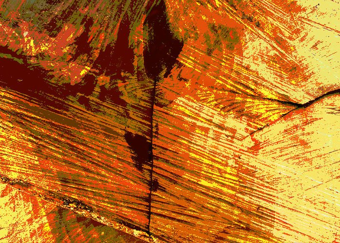 Abstract Greeting Card featuring the photograph Abstract Wood Grain by John Lautermilch