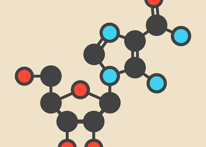 Molecular Model Greeting Cards