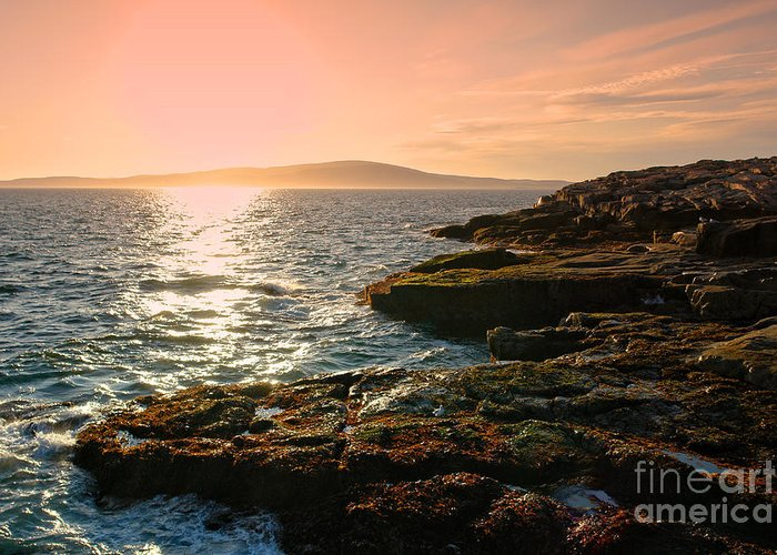 Maine Greeting Card featuring the photograph Acadia National Park by Olivier Le Queinec