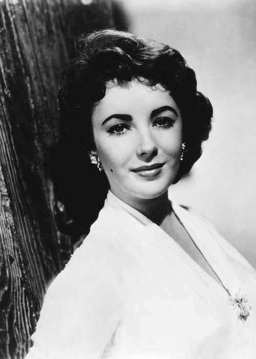 1950's Greeting Card featuring the photograph Actress Elizabeth Taylor by Underwood Archives