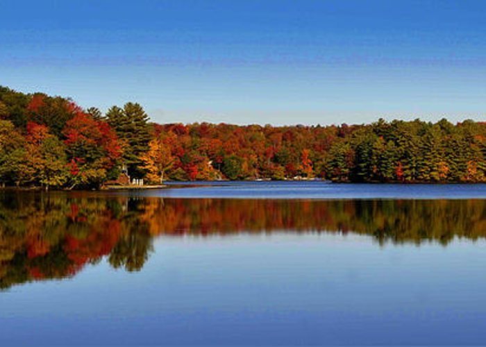 Diane Berry Greeting Card featuring the photograph Adirondack October by Diane E Berry