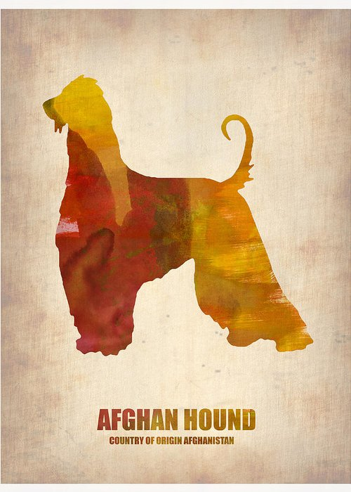 Afghan Hound Greeting Card featuring the painting Afghan Hound Poster by Naxart Studio