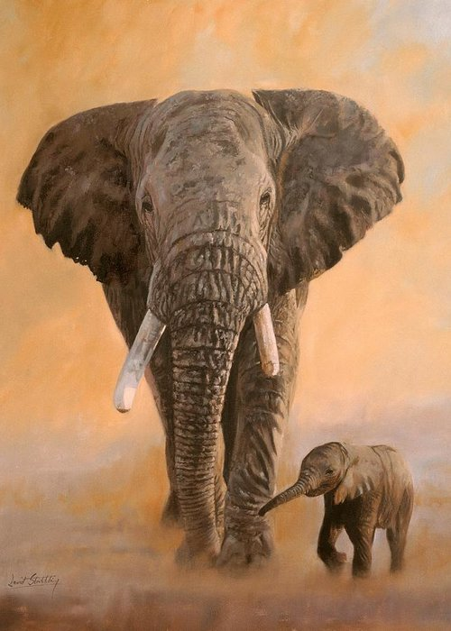 Wildlife Artist Greeting Cards
