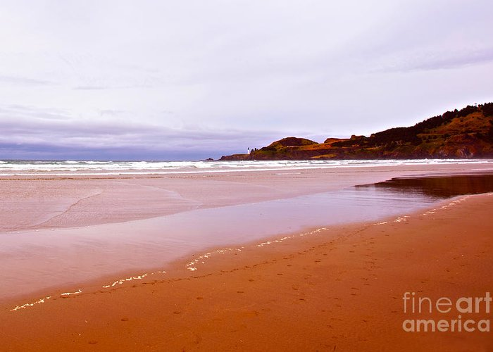 Beach Near Newport Oregon Greeting Cards