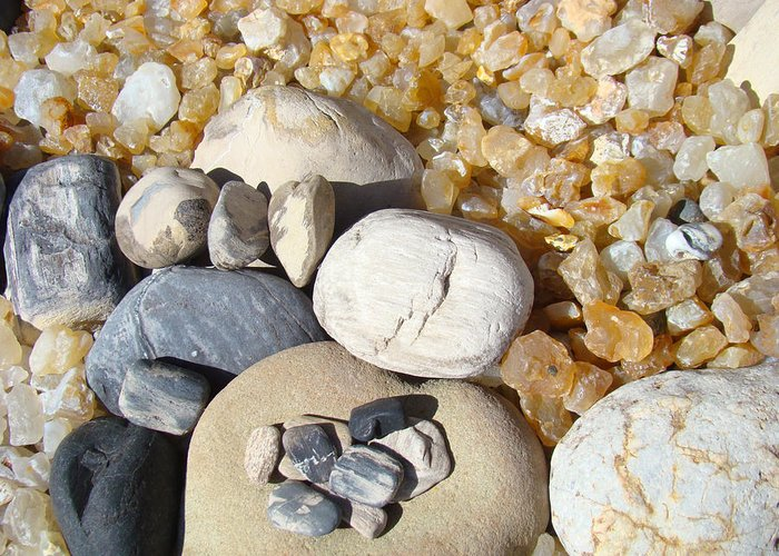 Fossils Greeting Card featuring the photograph Agates Rocks Art Prints Petrified Wood Fossils by Baslee Troutman