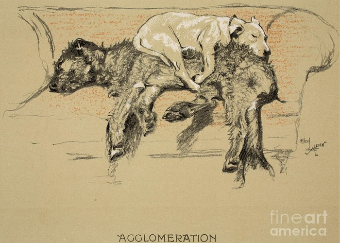 Dogs Greeting Card featuring the painting Agglomeration by Cecil Charles Windsor Aldin