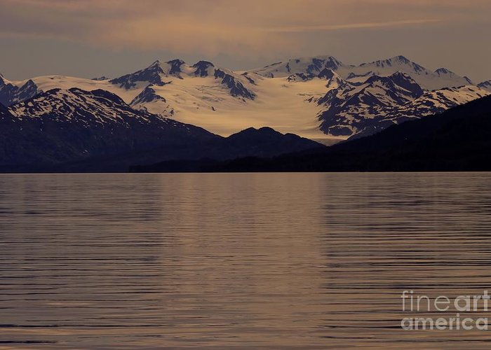 Alaska Greeting Card featuring the photograph Alaskan Light by Sophie Vigneault