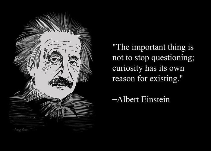 The important thing is not to Stop Questioning. ALBERT EINSTEIN Wall Quote
