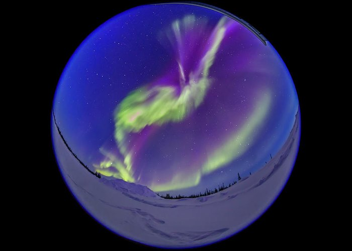360� Greeting Card featuring the photograph All-sky Aurora In The Twilight by Alan Dyer