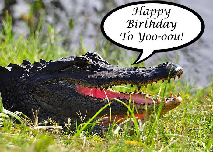 Birthday Greeting Card featuring the photograph Alligator Birthday Card by Al Powell Photography USA