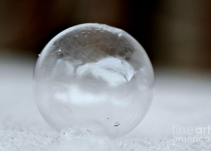 Bubble Greeting Card featuring the photograph Almost Frozen by Lila Fisher-Wenzel