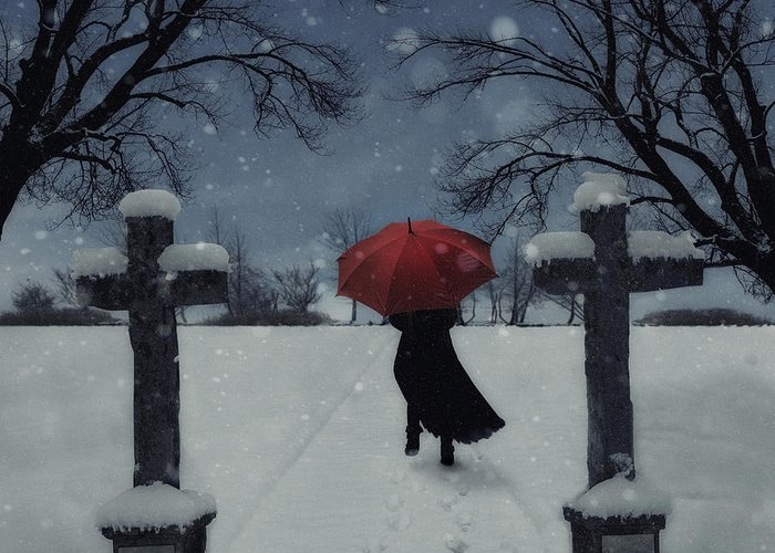 Woman Greeting Card featuring the photograph Alone In The Snow by Joana Kruse