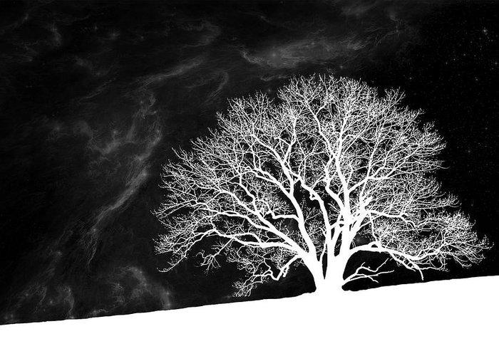 Bare Oak Tree Greeting Cards