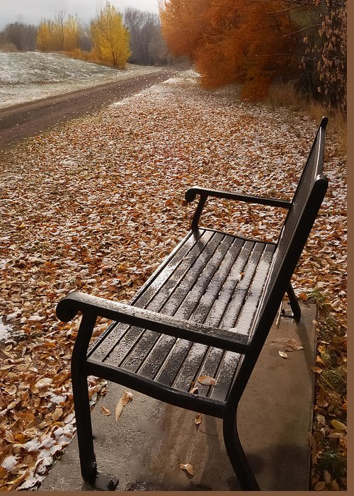 Benches Greeting Card featuring the photograph Alone With Autumn by Steven Milner