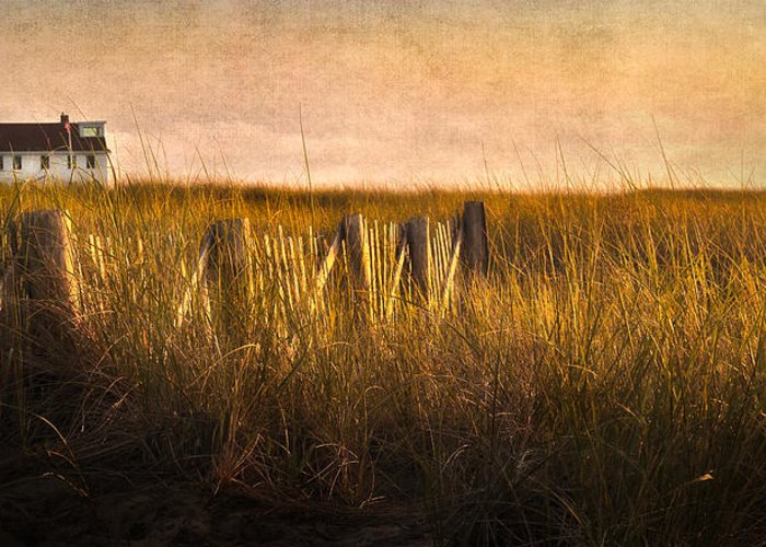 Cape Cod Greeting Card featuring the photograph Along The Fence by Bill Wakeley