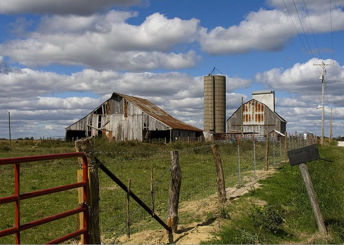 Rural Greeting Card featuring the photograph Along The Fence Line by Eric Mace