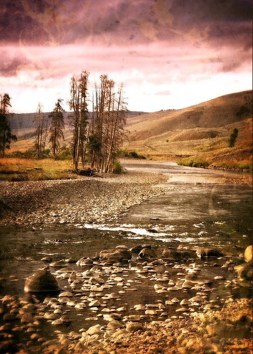 River Greeting Card featuring the photograph Along The Larmar River 2 by Marty Koch