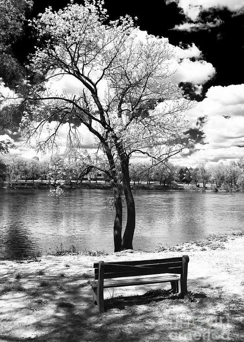 Along The River Greeting Card featuring the photograph Along The River by John Rizzuto