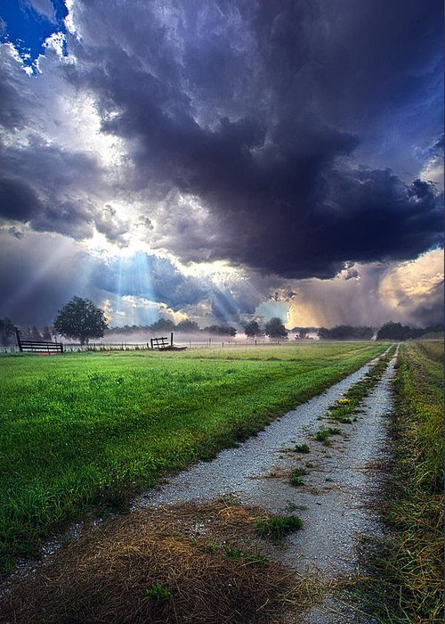 Road Greeting Card featuring the photograph Along The Way by Phil Koch