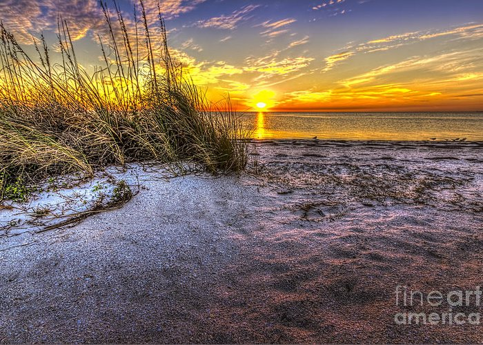 Howard Park Greeting Card featuring the photograph Ambience Of The Gulf by Marvin Spates