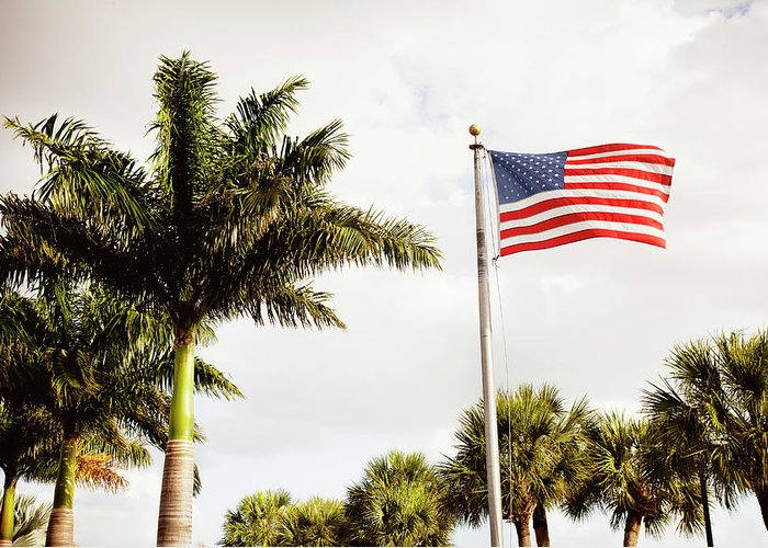 Tranquility Greeting Card featuring the photograph American Flag Flying Amongst Palm Trees by Ron Levine