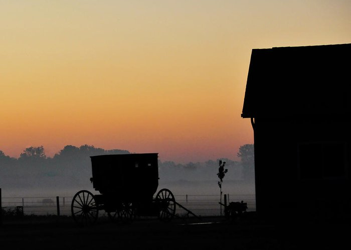 Amish Buggy Greeting Card featuring the photograph Amish Buggy Before Dawn by David Arment