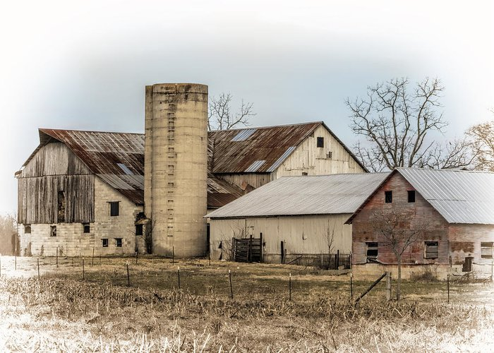 Amish Greeting Card featuring the photograph Amish Farm In Etheridge Tennessee Usa by Kathy Clark