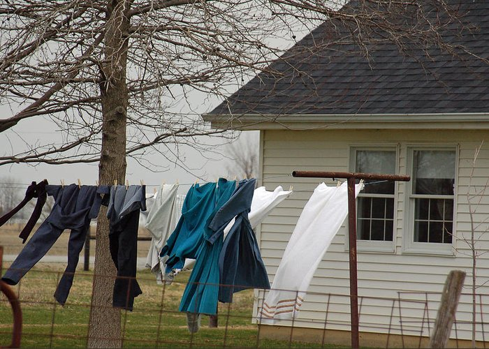 Clothesline Greeting Card featuring the photograph Amish Washday - Allen County Indiana by Suzanne Gaff