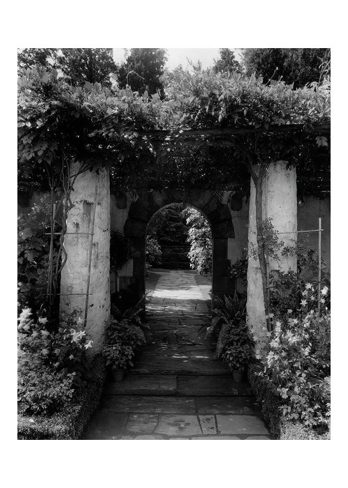 Exterior Greeting Card featuring the photograph An Archway In The Garden Of Mrs. Carl Tucker by Harry G. Healy