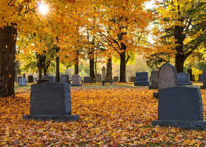 Forest Hill Cemetery Greeting Card featuring the photograph Forest Hill Autumn Light by Mary Amerman