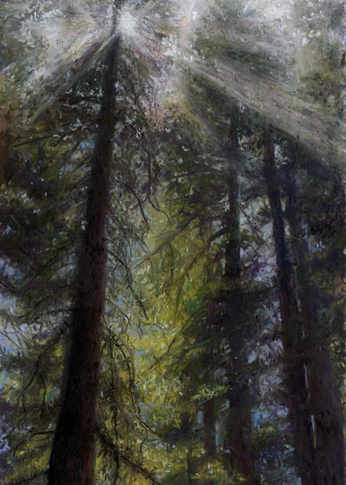 Pastel Greeting Card featuring the painting An Enchanted Forest by Mary Giacomini