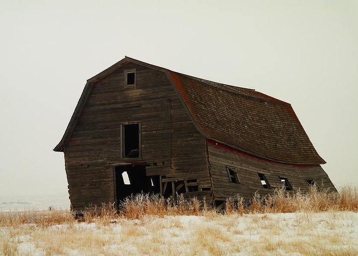 Barns Greeting Card featuring the photograph An Old Leaning Barn In North Dakota by Jeff Swan
