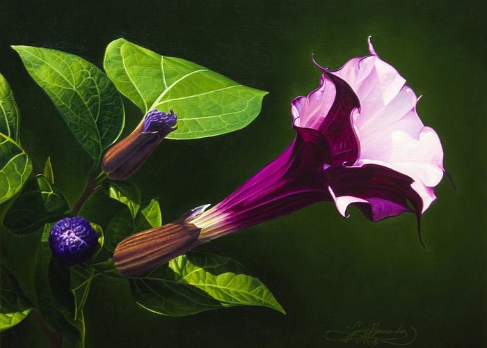 Floral Greeting Card featuring the painting Anastacias Datura by Gary Hernandez