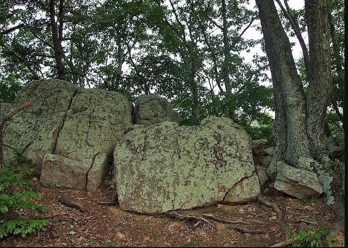 Ancient Greeting Card featuring the photograph Ancient Boulders by Susan Wyman