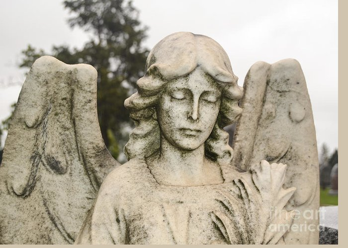 Angel Greeting Card featuring the photograph Angel by Catherine Hill