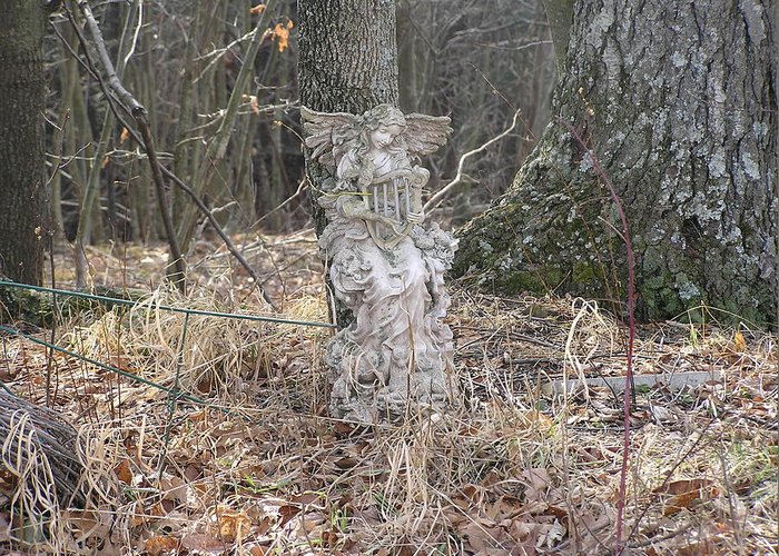 Angel Statue Greeting Card featuring the photograph Angel In The Woods by Marisa Horn