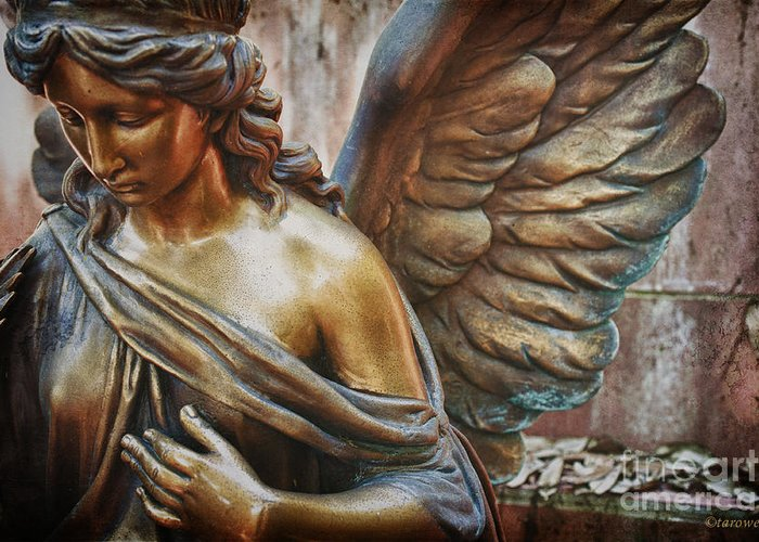 Angelic Contemplation Greeting Card featuring the photograph Angelic Contemplation by Terry Rowe