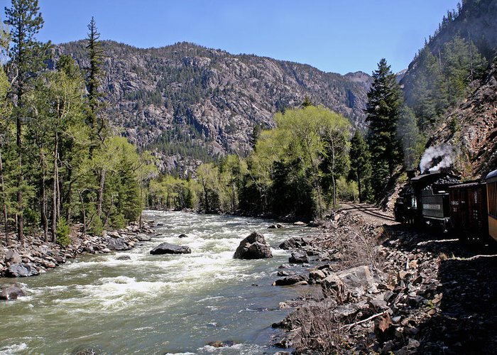 Mountains Greeting Card featuring the photograph Animas River by Shirley Roberson