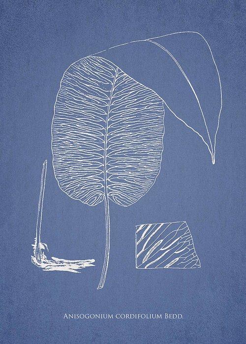 Fern Greeting Card featuring the digital art Anisogonium Cordifolium by Aged Pixel