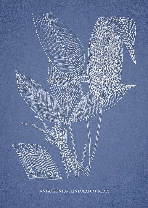 Fern Greeting Card featuring the digital art Anisogonium Lineolatum by Aged Pixel
