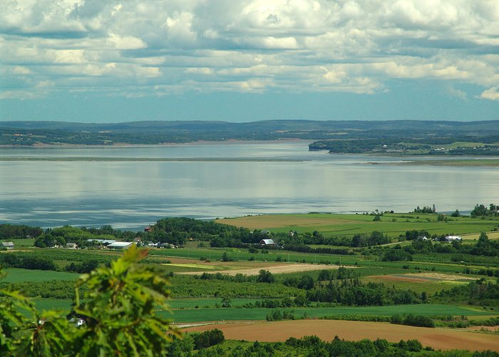 George Greeting Card featuring the photograph Annapolis Valley No.1 by George Cousins